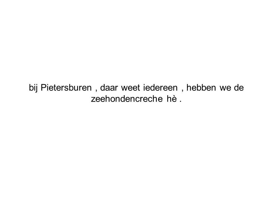 bij Pietersburen , daar weet iedereen , hebben we de zeehondencreche hè .