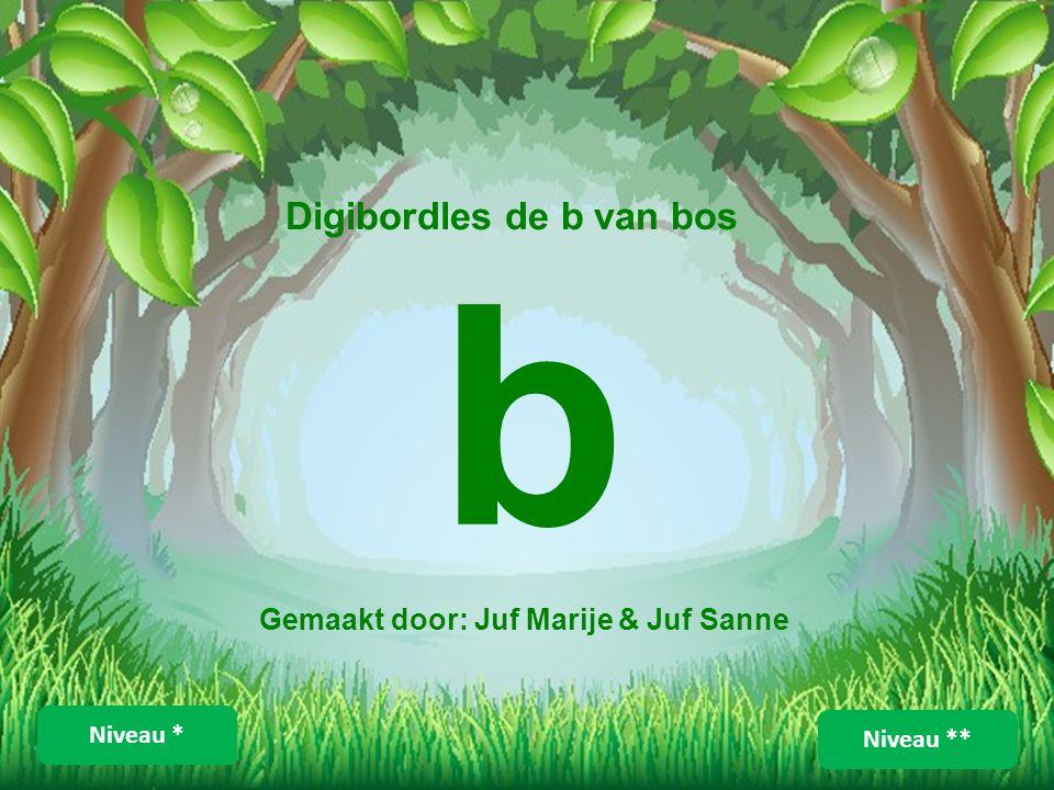 Digibordles de b van bos Gemaakt door: Juf Marije & Juf Sanne