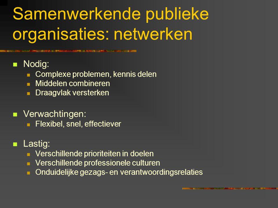 Samenwerkende publieke organisaties: netwerken