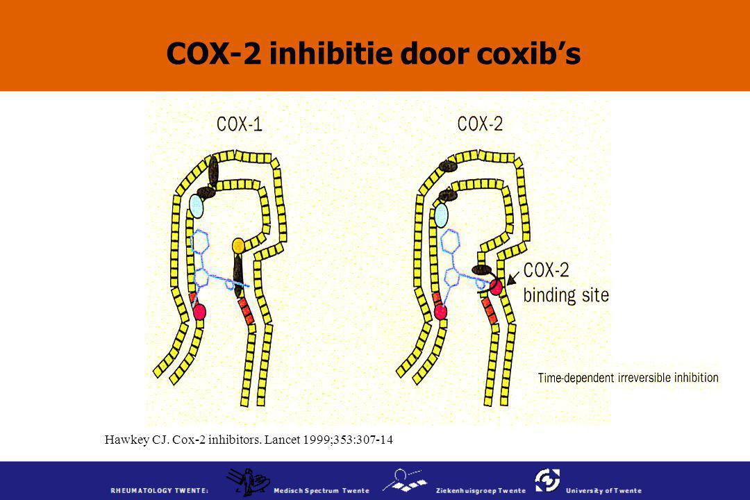 COX-2 inhibitie door coxib's