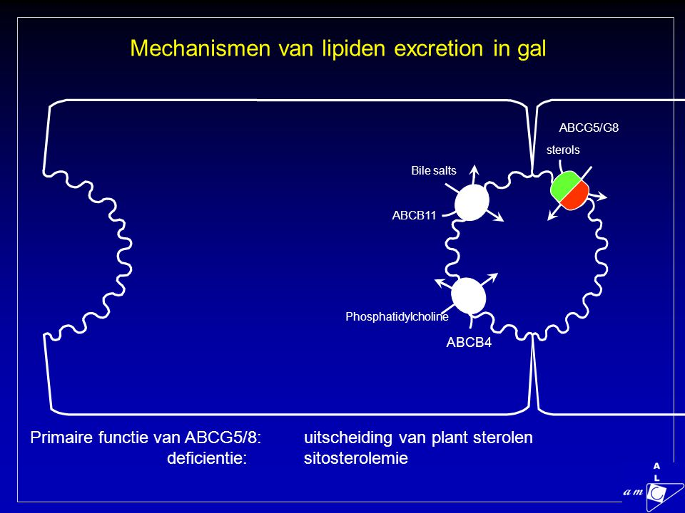 Mechanismen van lipiden excretion in gal