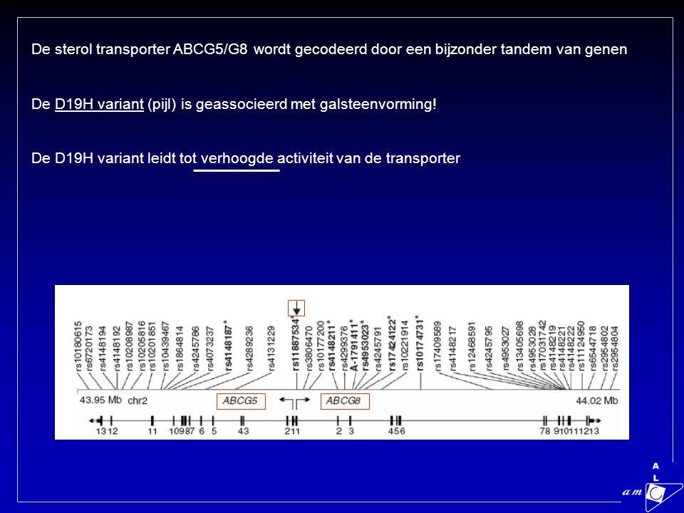 De sterol transporter ABCG5/G8 wordt gecodeerd door een bijzonder tandem van genen