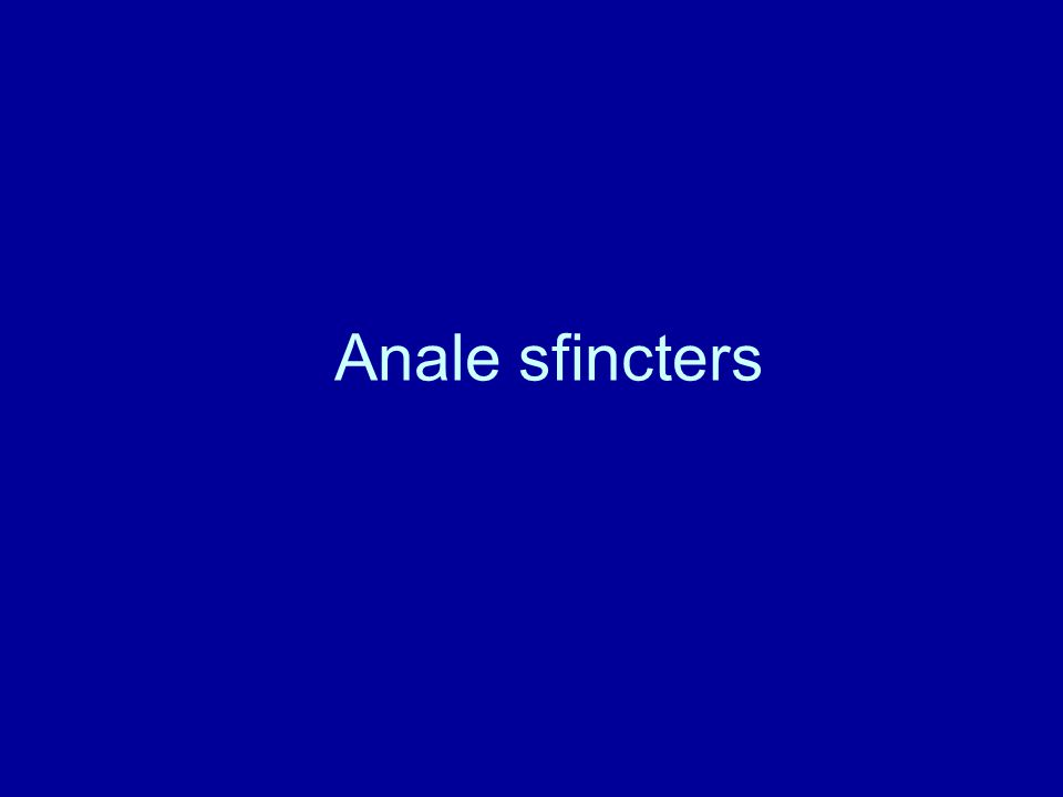Anale sfincters