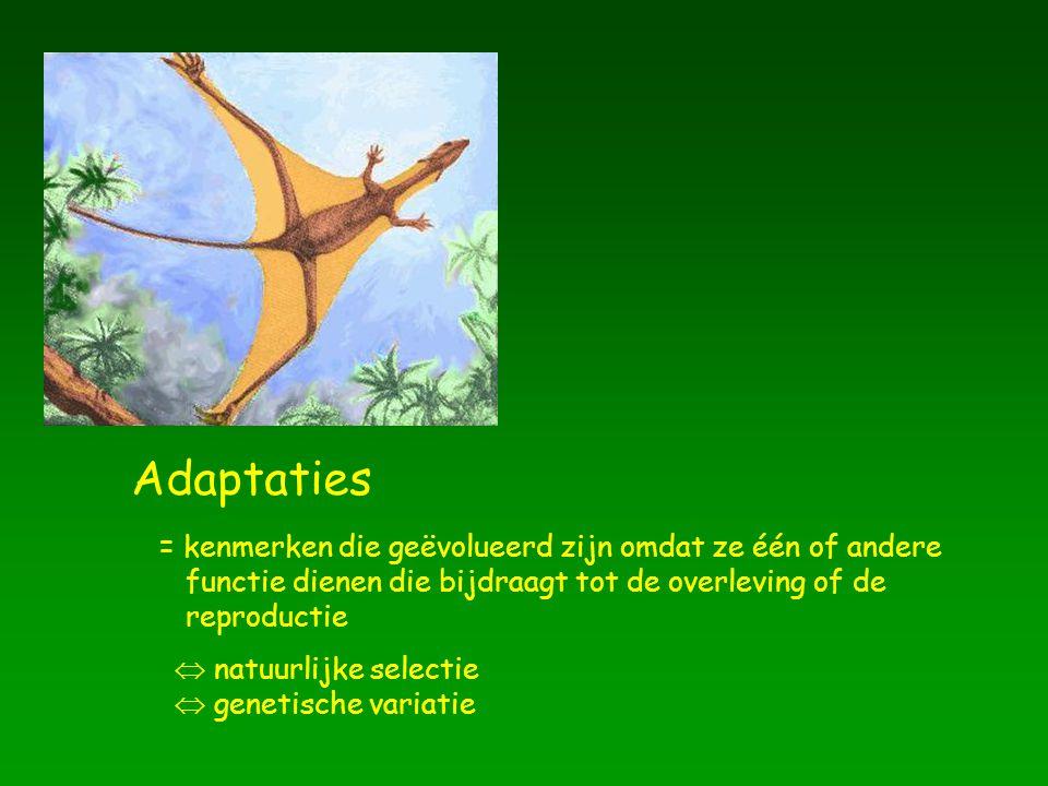 Adaptaties = kenmerken die geëvolueerd zijn omdat ze één of andere