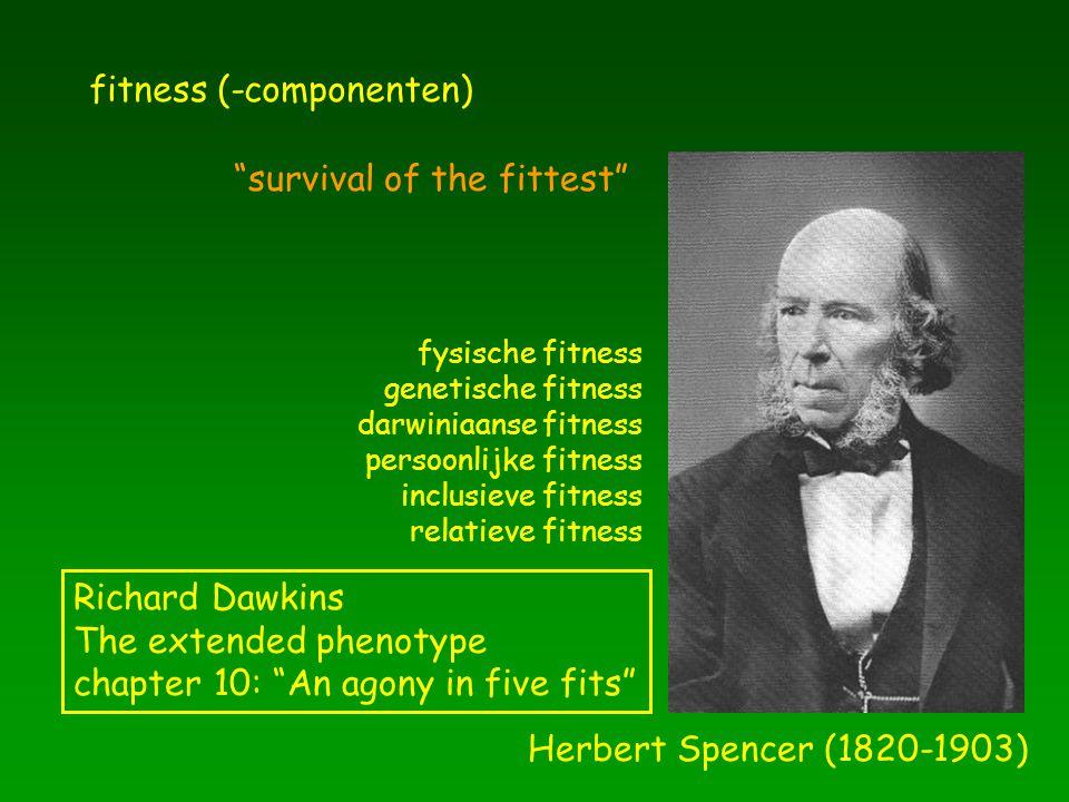 fitness (-componenten)