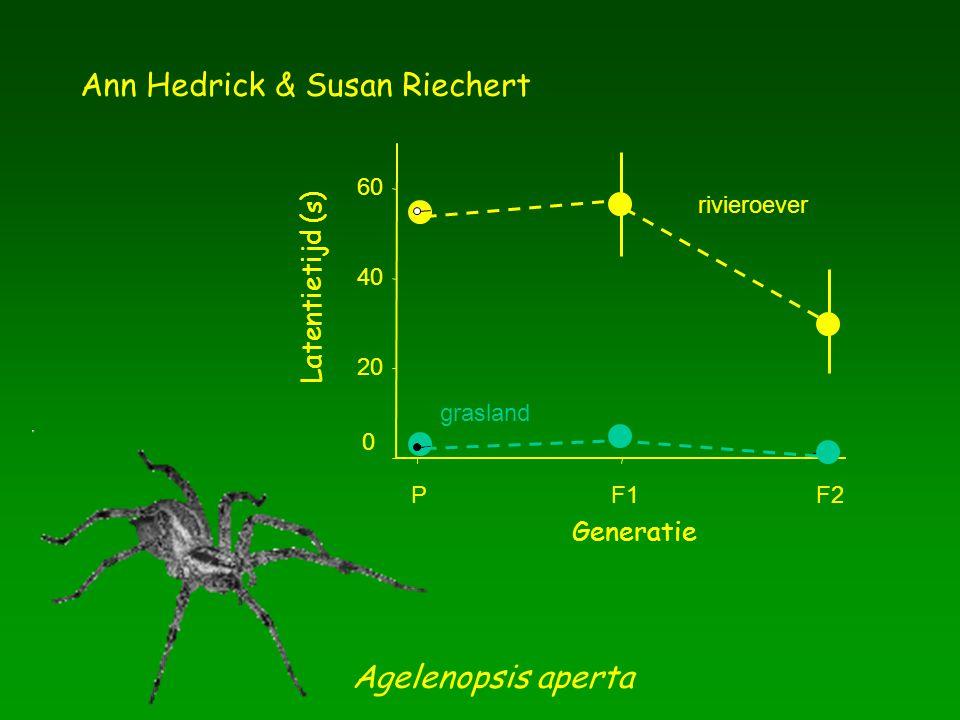 Ann Hedrick & Susan Riechert