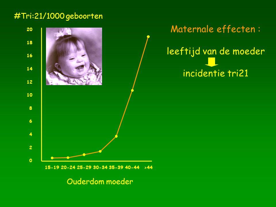 Maternale effecten : leeftijd van de moeder incidentie tri21