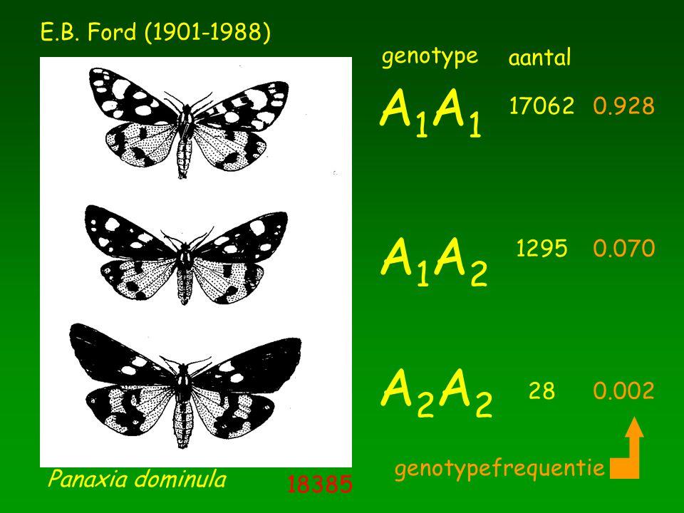 A1A1 A1A2 A2A2 E.B. Ford (1901-1988) genotype 17062 1295 28 aantal