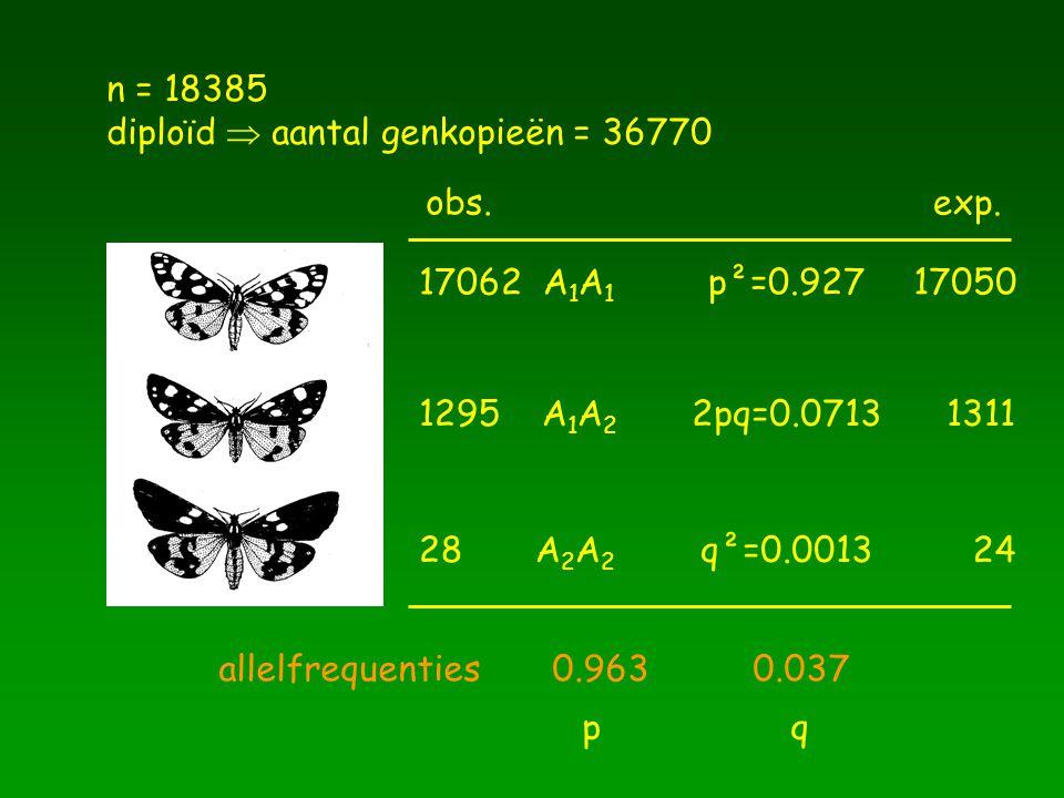 n = 18385 diploïd  aantal genkopieën = 36770. obs. exp. 17062 A1A1. p²=0.927. 17050. 1295 A1A2.