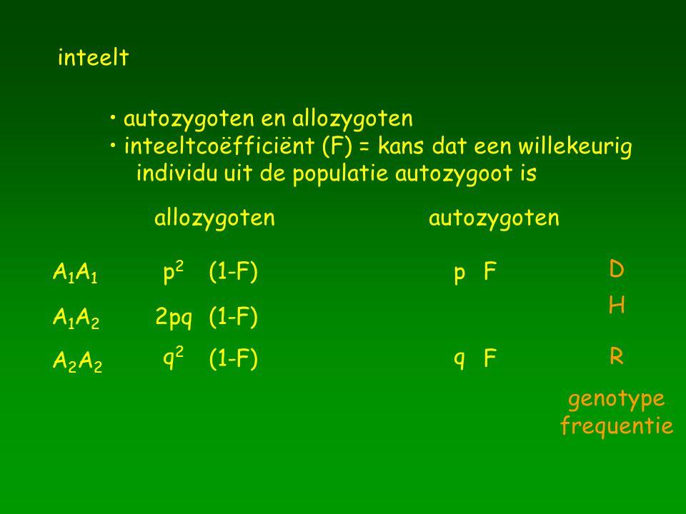 inteelt autozygoten en allozygoten. inteeltcoëfficiënt (F) = kans dat een willekeurig. individu uit de populatie autozygoot is.