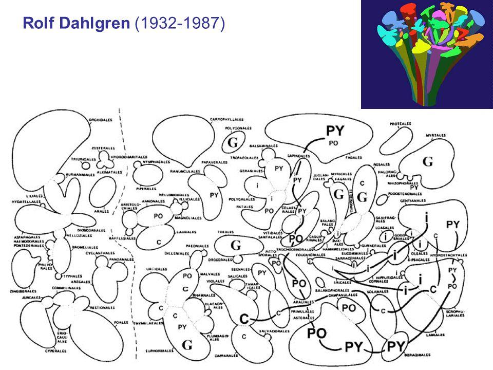 Rolf Dahlgren (1932-1987)