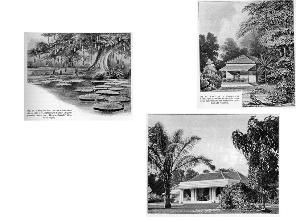 De befaamde Botanische Tuin van Buitenzorg had een paviljoen voor bezoekers waar zowat alle toenmalige vermaarde biologen hebben verbleven (Haeckel, …)
