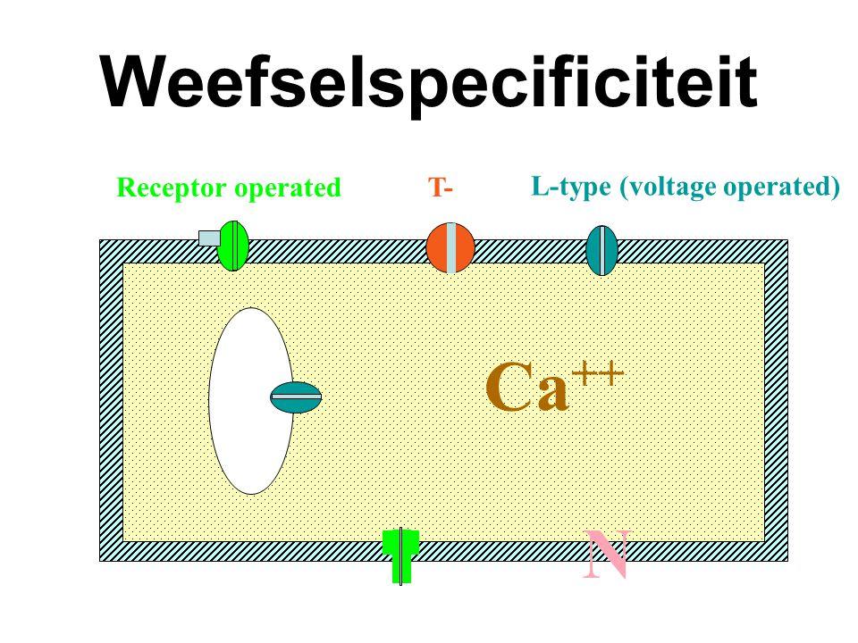 Weefselspecificiteit