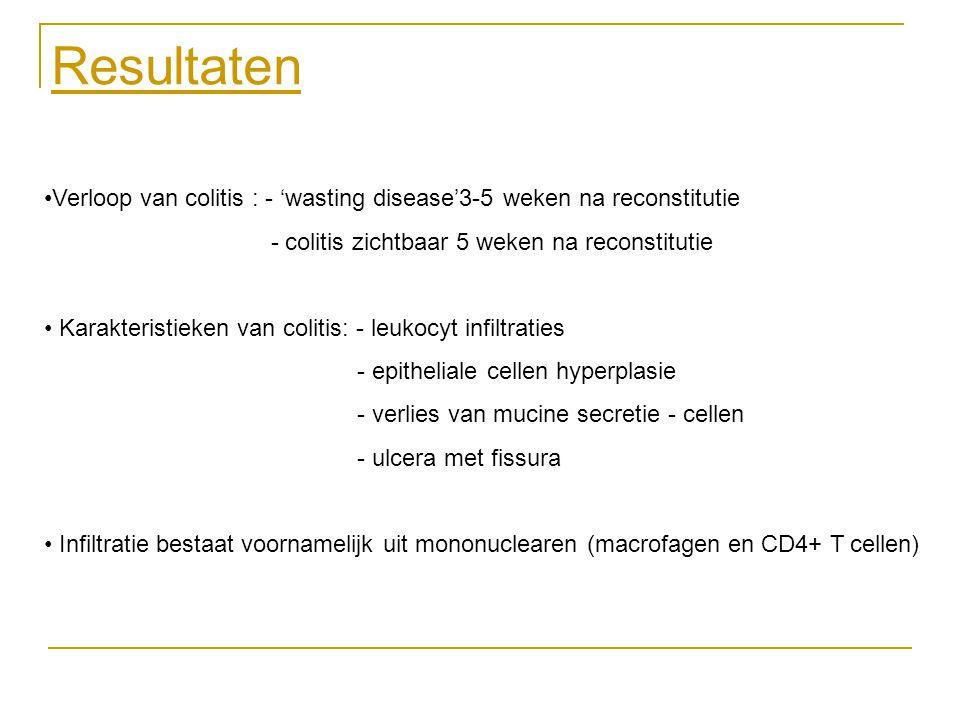 Resultaten Verloop van colitis : - 'wasting disease'3-5 weken na reconstitutie. - colitis zichtbaar 5 weken na reconstitutie.