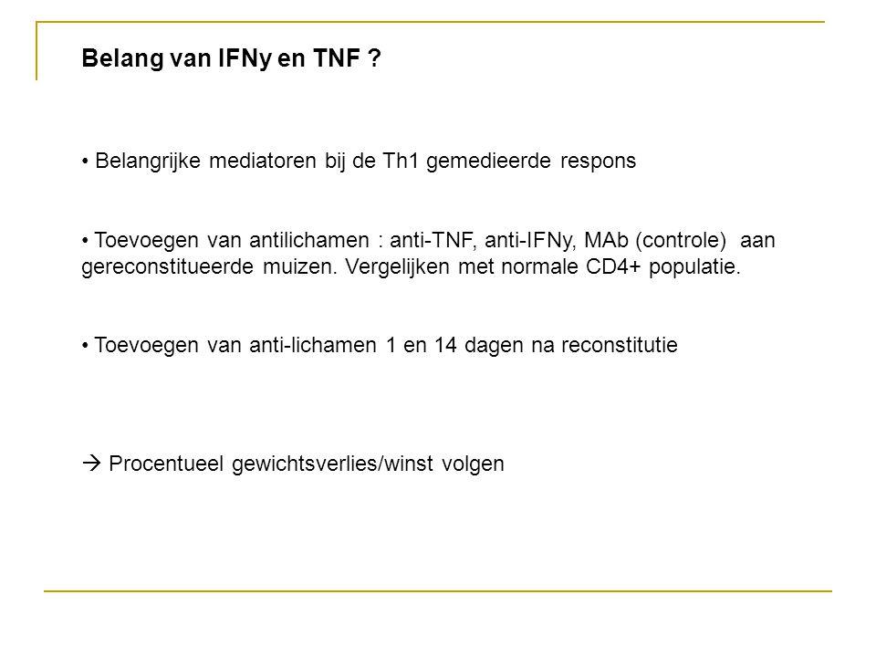 Belang van IFNy en TNF Belangrijke mediatoren bij de Th1 gemedieerde respons.