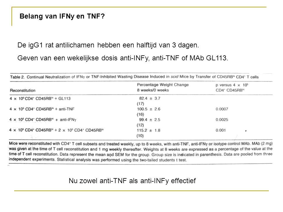 Belang van IFNy en TNF De igG1 rat antilichamen hebben een halftijd van 3 dagen. Geven van een wekelijkse dosis anti-INFy, anti-TNF of MAb GL113.