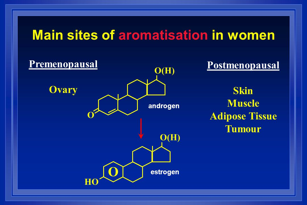 Main sites of aromatisation in women