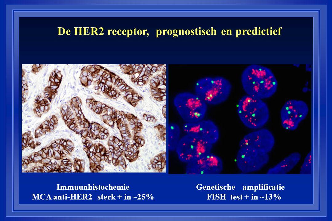 De HER2 receptor, prognostisch en predictief