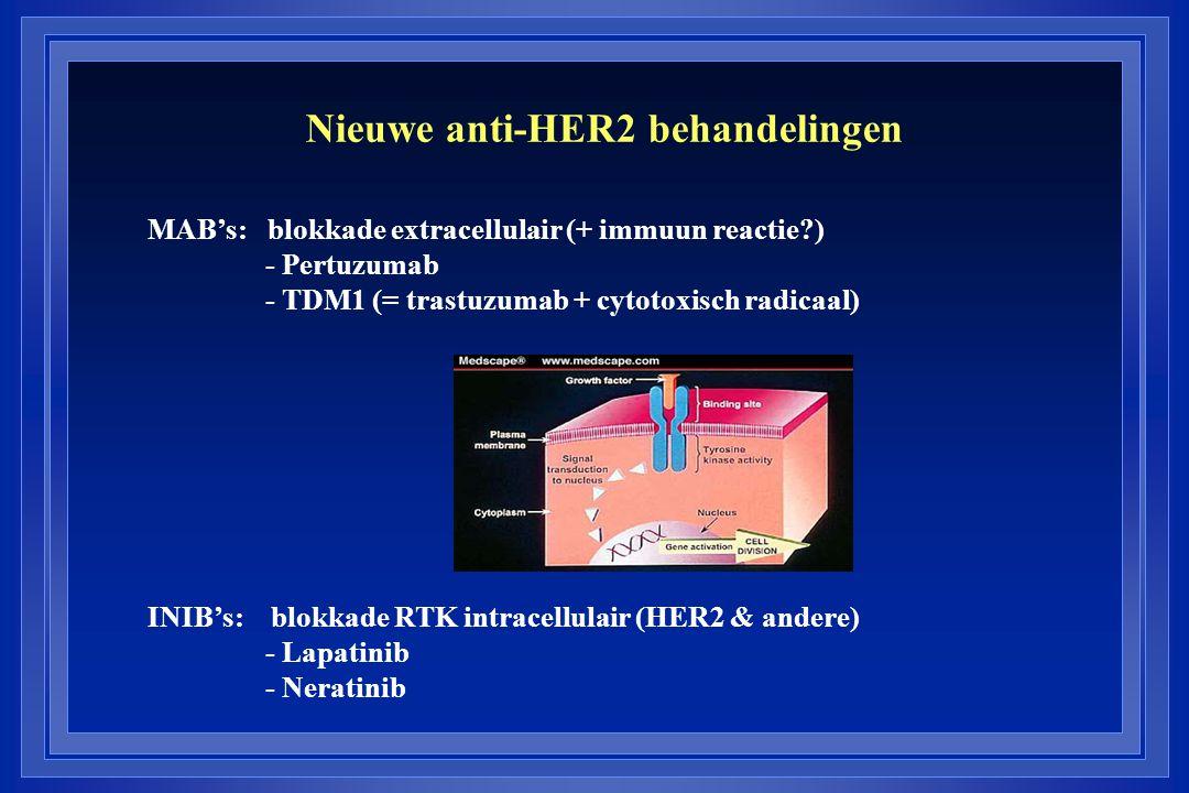 Nieuwe anti-HER2 behandelingen