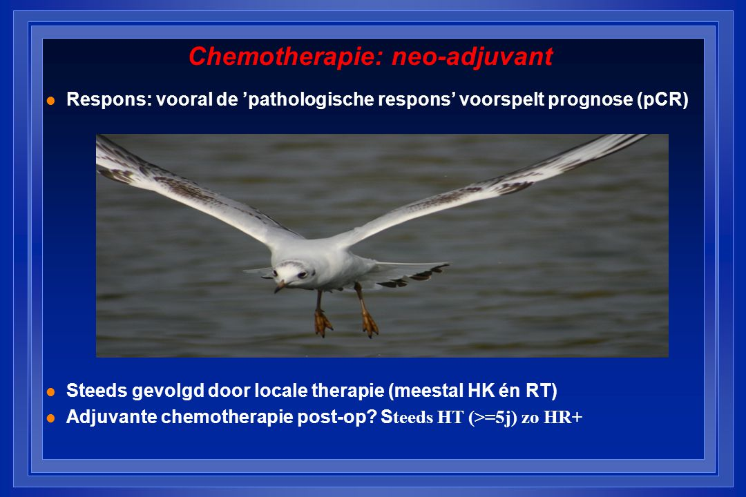 Chemotherapie: neo-adjuvant