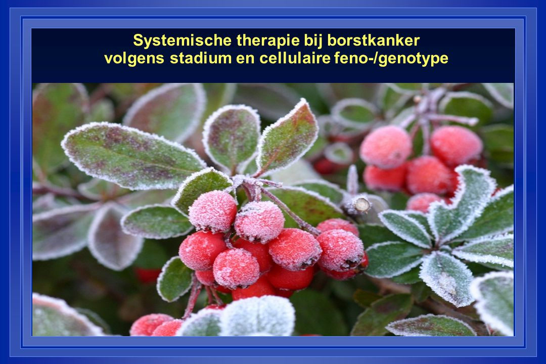 Systemische therapie bij borstkanker volgens stadium en cellulaire feno-/genotype