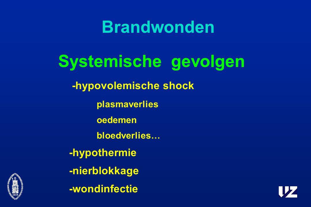 Brandwonden Systemische gevolgen -hypovolemische shock plasmaverlies