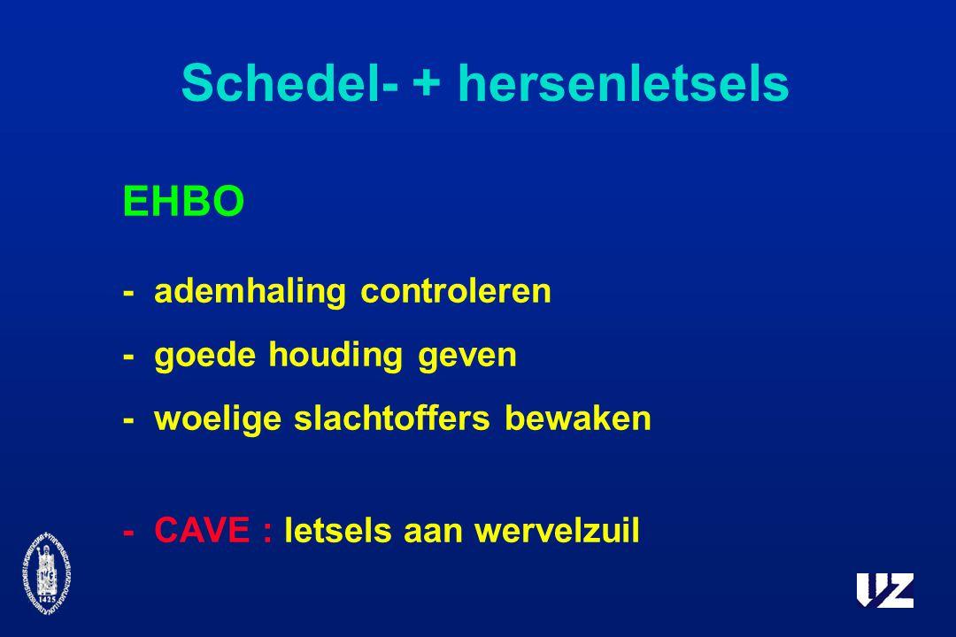 Schedel- + hersenletsels