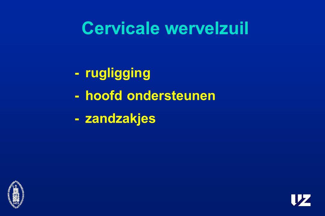 Cervicale wervelzuil - rugligging - hoofd ondersteunen - zandzakjes