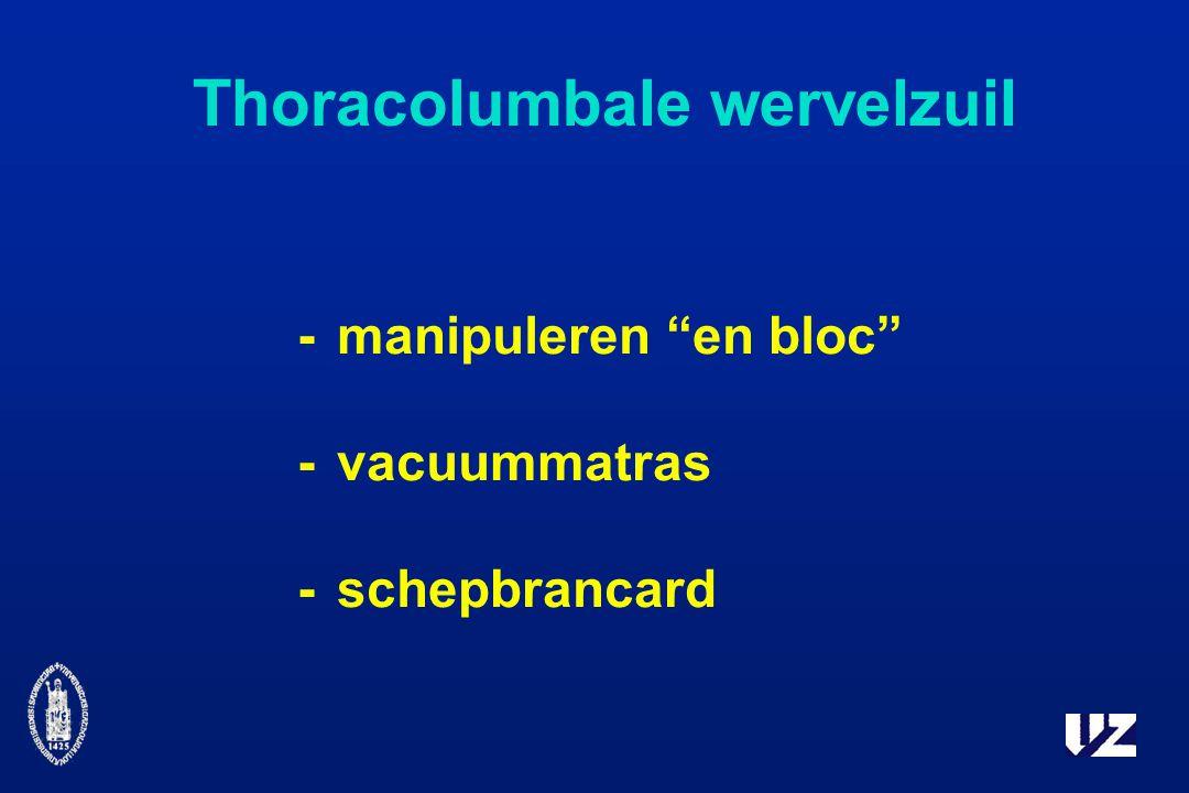Thoracolumbale wervelzuil