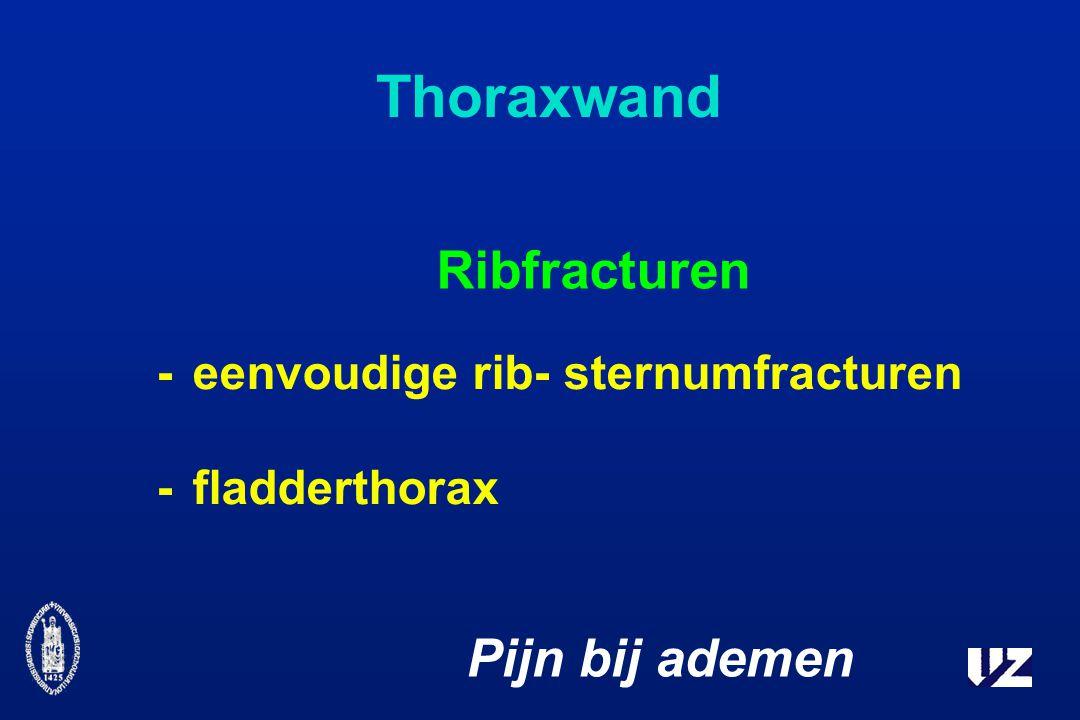Thoraxwand Ribfracturen Pijn bij ademen