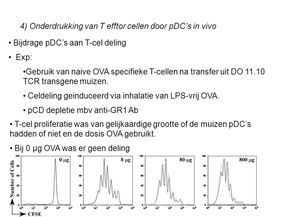 4) Onderdrukking van T efftor cellen door pDC's in vivo
