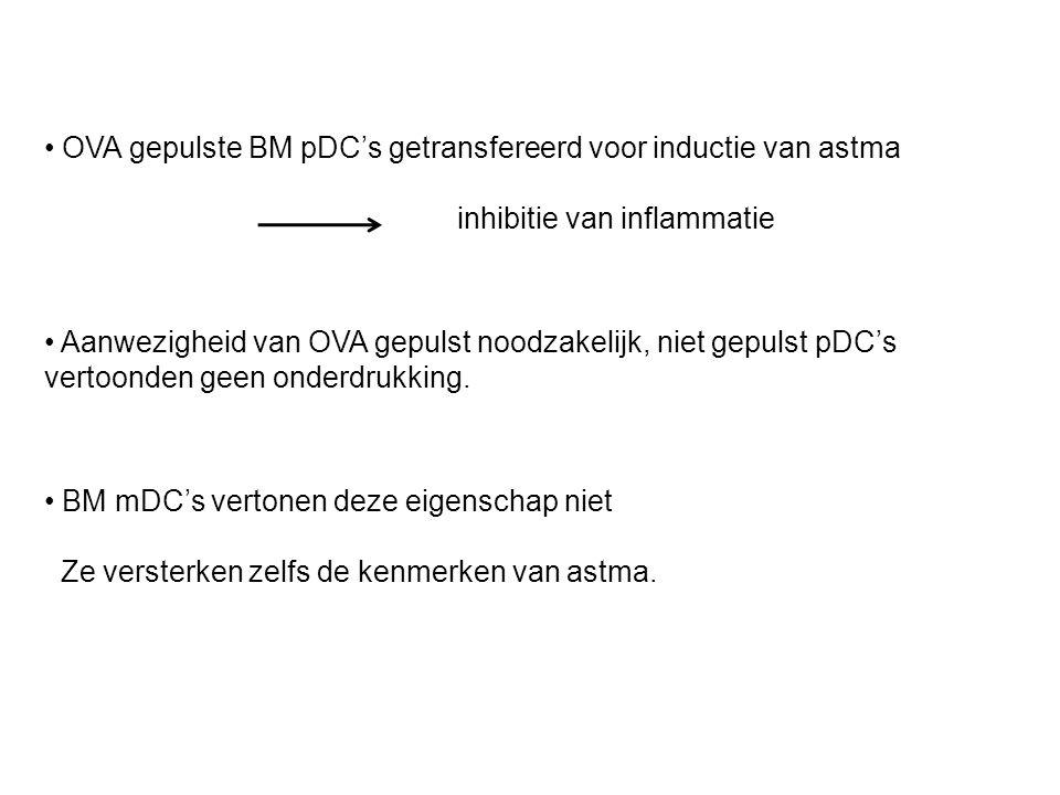 OVA gepulste BM pDC's getransfereerd voor inductie van astma inhibitie van inflammatie