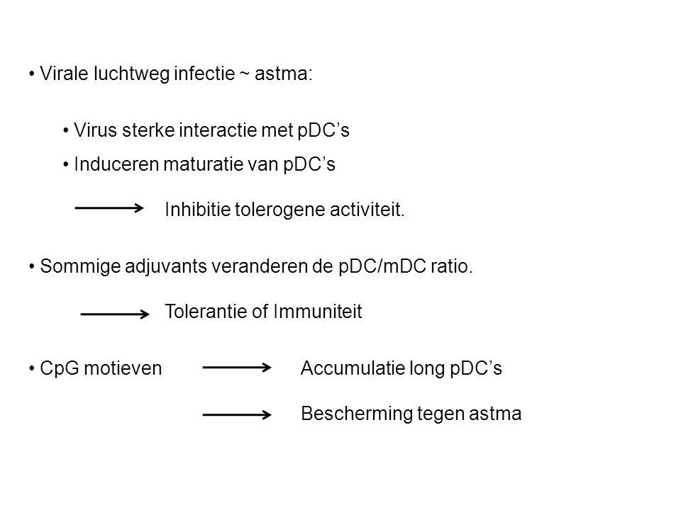 Virale luchtweg infectie ~ astma: