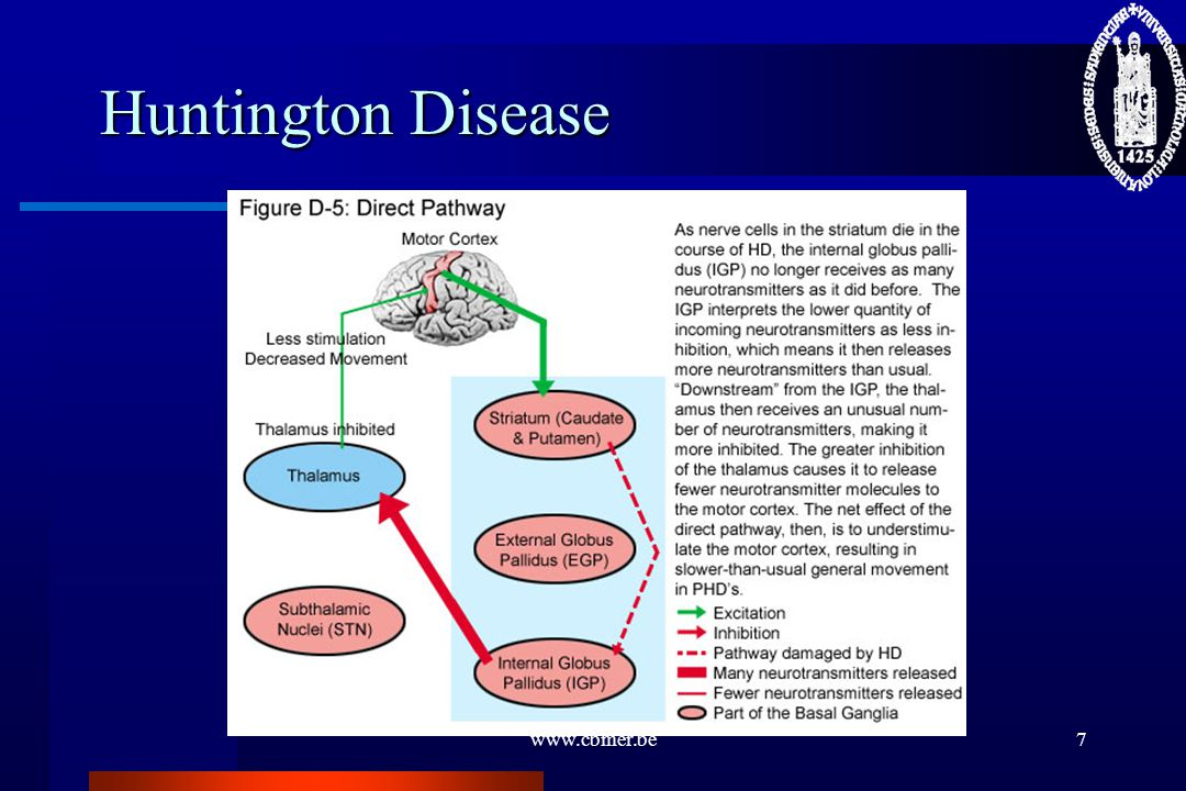 Huntington Disease www.cbmer.be