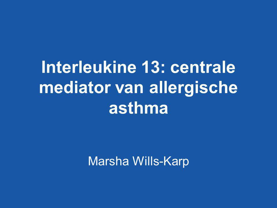 Interleukine 13: centrale mediator van allergische asthma