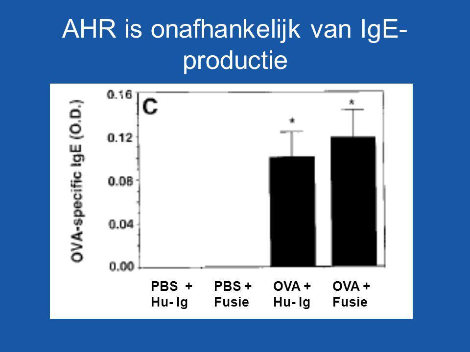 AHR is onafhankelijk van IgE- productie