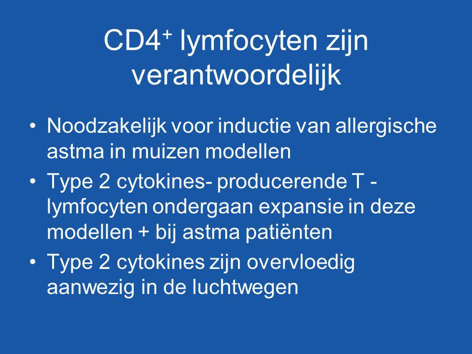 CD4+ lymfocyten zijn verantwoordelijk