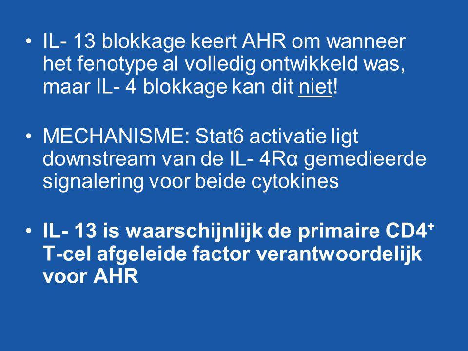 IL- 13 blokkage keert AHR om wanneer het fenotype al volledig ontwikkeld was, maar IL- 4 blokkage kan dit niet!
