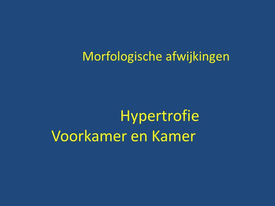 Morfologische afwijkingen Hypertrofie Voorkamer en Kamer
