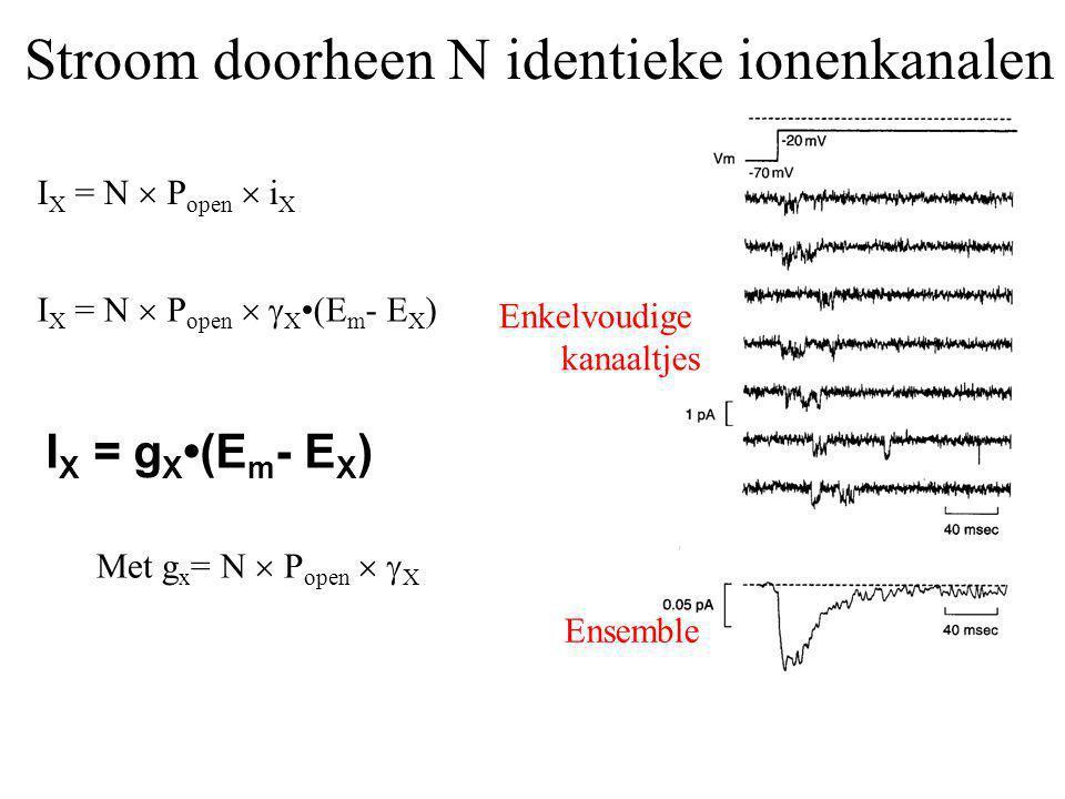Stroom doorheen N identieke ionenkanalen