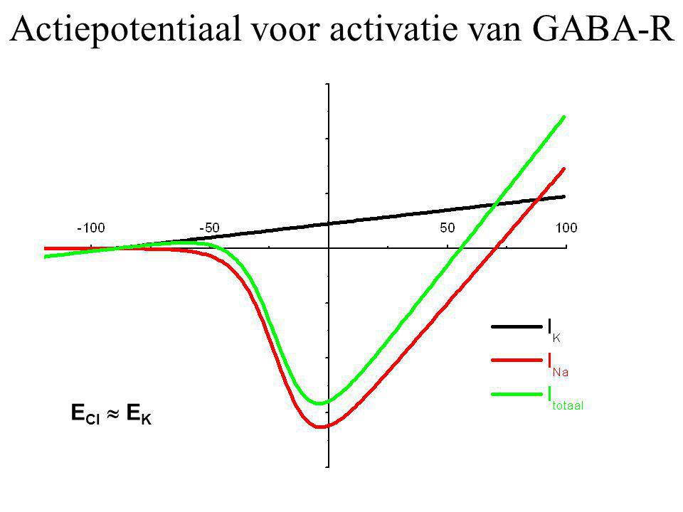 Actiepotentiaal voor activatie van GABA-R