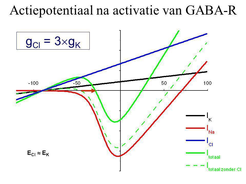 Actiepotentiaal na activatie van GABA-R