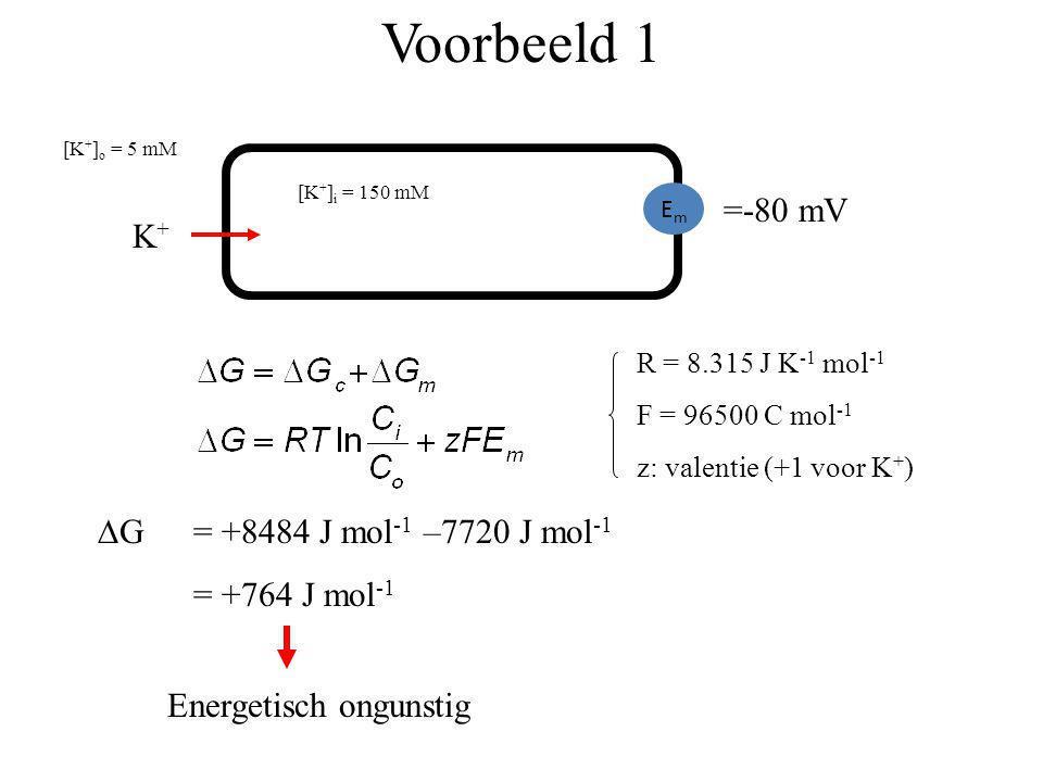 Voorbeeld 1 =-80 mV K+ G = +8484 J mol-1 –7720 J mol-1