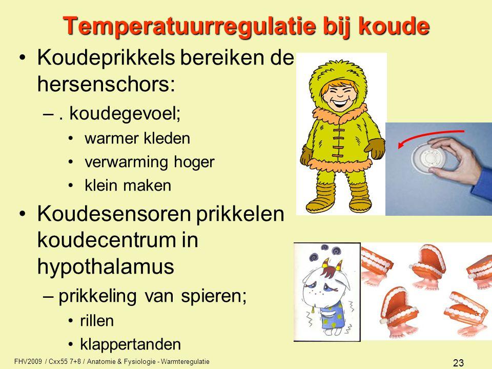 Temperatuurregulatie bij koude