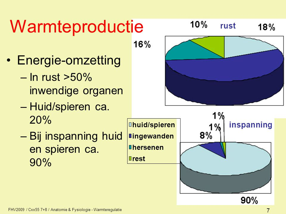 Warmteproductie Energie-omzetting In rust >50% inwendige organen