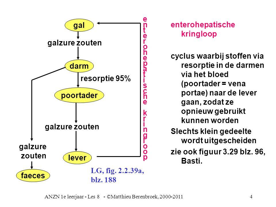 ANZN 1e leerjaar - Les 8 - ©Matthieu Berenbroek, 2000-2011