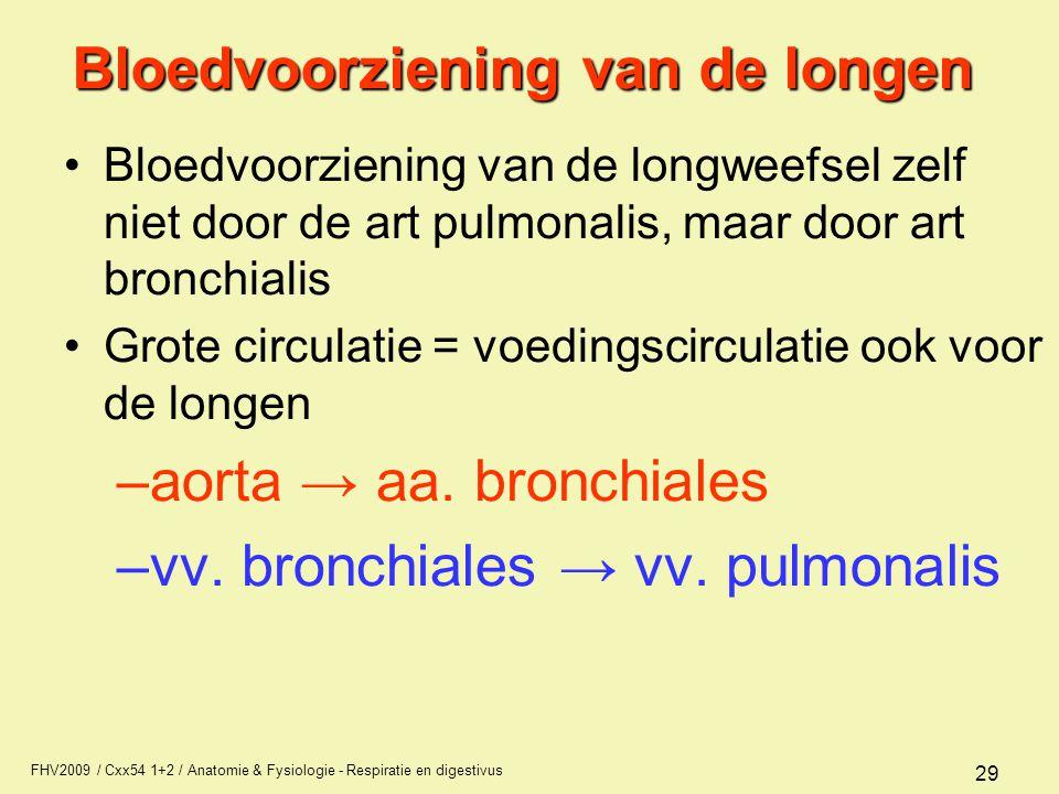 Bloedvoorziening van de longen