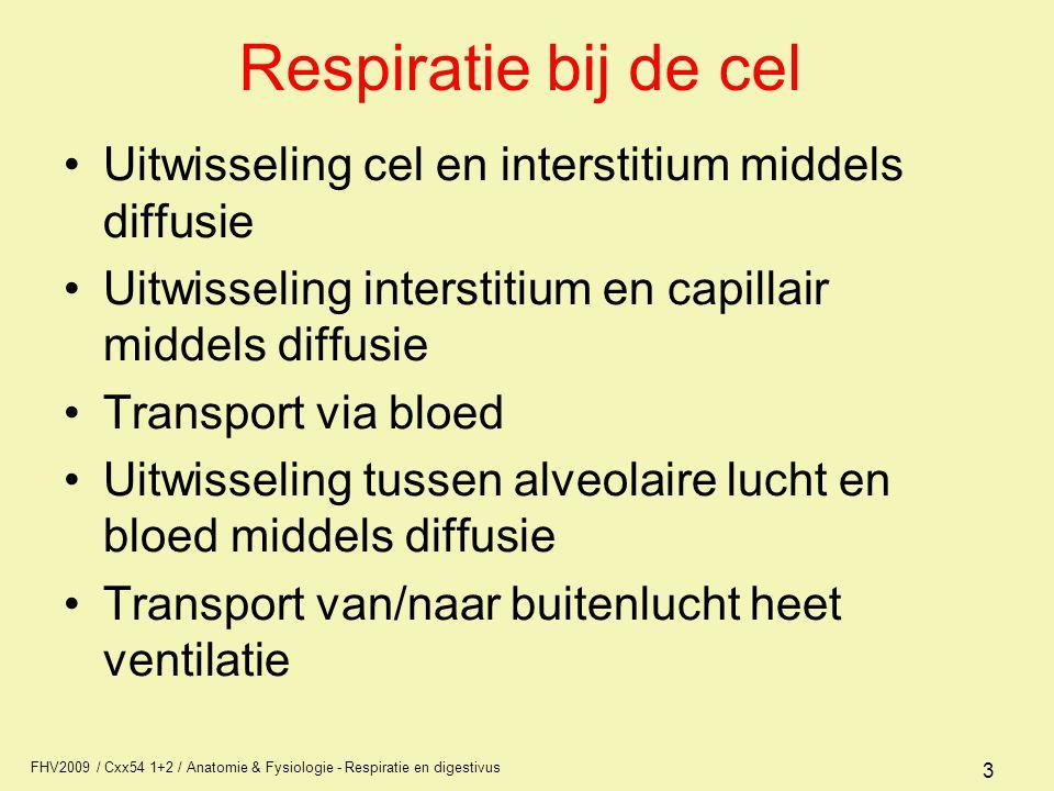 Respiratie bij de cel Uitwisseling cel en interstitium middels diffusie. Uitwisseling interstitium en capillair middels diffusie.
