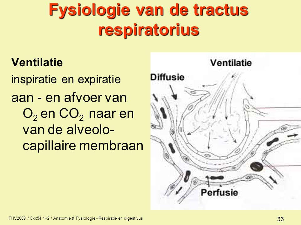 Fysiologie van de tractus respiratorius