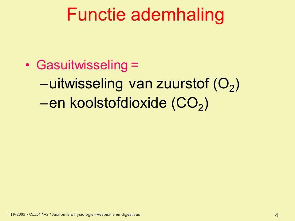 Functie ademhaling uitwisseling van zuurstof (O2)